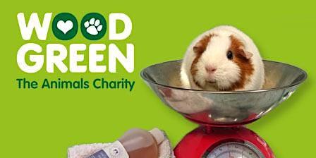 Pet Health & Wellbeing Check - Godmanchester