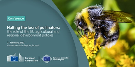 Halting the loss of pollinators: The role of the EU agricultural and region tickets