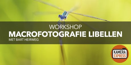Macrofotografie Libellen met Bart Heirweg tickets