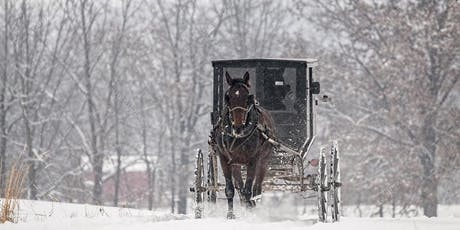 Amish Buggy Rides in the Country  tickets