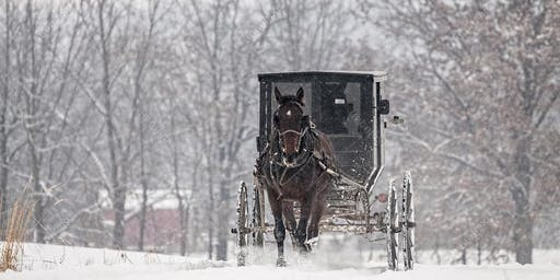 Amish Buggy Rides in the Country