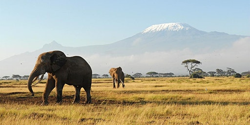 Exploring East Africa: Kenya, Uganda & Tanzania