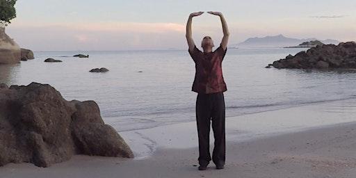 Shaolin Cosmos Qigong (Chi Kung) Full Taster Class