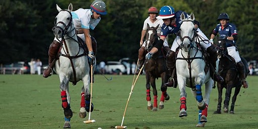 Polo & Learn To Play Day