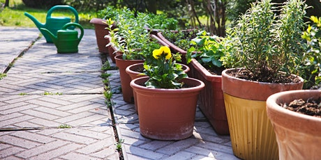 GROWING PLANTS IN CONTAINERS: THE SCIENCE AND ART OF PORTABLE HORTICULTURE tickets