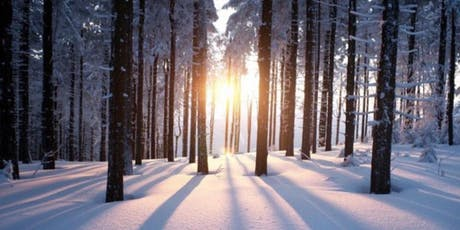 Winter Solstice Celebration & Gallery Style Messages with Cassandra. & Angi tickets