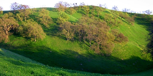 Shell Ridge Open Space Hike