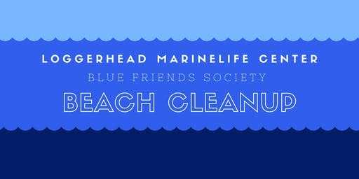 Blue Friends Society December Beach Cleanup