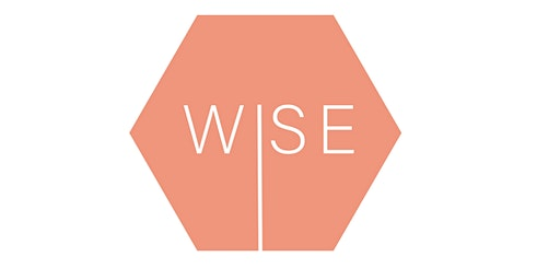 WISE - Women in Sales Excel launch event!
