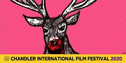 Best International Short Films