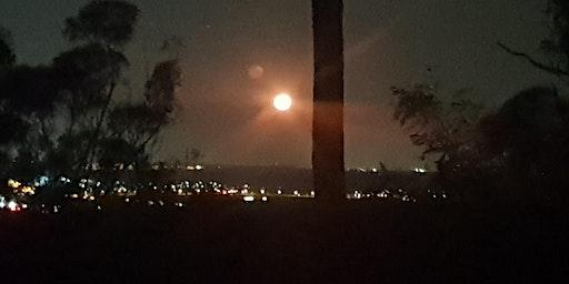 Twilight Moonrise Guided Nightwalk - Thursday