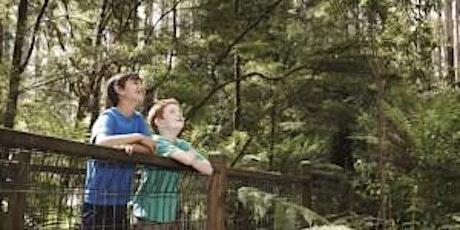 CANCELLED Junior Rangers Rainforest Explorer - Dandenong Ranges National Park tickets