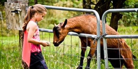 January Farm School: A Program for Homeschool Families tickets