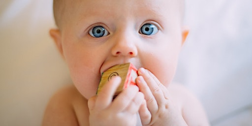 Bentonville Baby Basics and Infant Safety