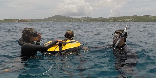 Beginner Freedive Course