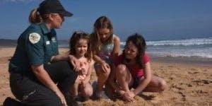Junior Rangers Beach Combing -  Barwon Bluff Marine Sanctuary