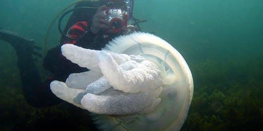 Beware Reef Movie Night 08 January 2020 - Lake Tyers