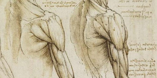 Master sulle patologie di spalla: corso teorico-pratico di riabilitazione specialistica