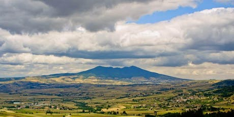 Tectonic Shift: The Rise of Volcanic Wines  - Wine Tasting tickets
