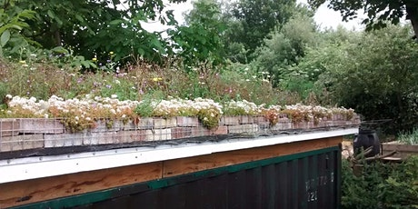 Grow a green roof tickets