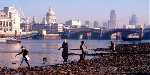 LEEF National Urban Environmental Education Conference 2020