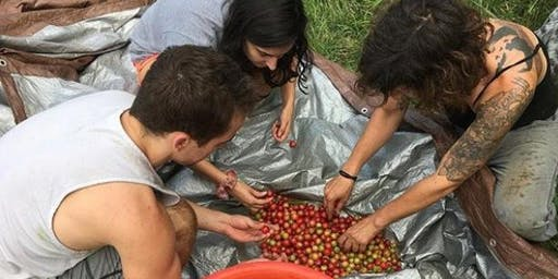 Call for Herbal Garden Volunteers and Interns [Tea Tasting & Tour]