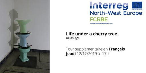 Guided Tours through Life Under a Cherry Tree (FR)