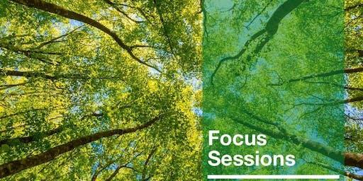 Focus Session - Dec. 12th