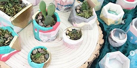Jesmonite Plant Pot Workshop at the Peppercorn tickets