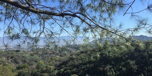 Hiker Babes LA Hike Fryman Canyon Trail