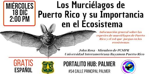 Los Murciélagos de  Puerto Rico y su Importancia  en el Ecosistema