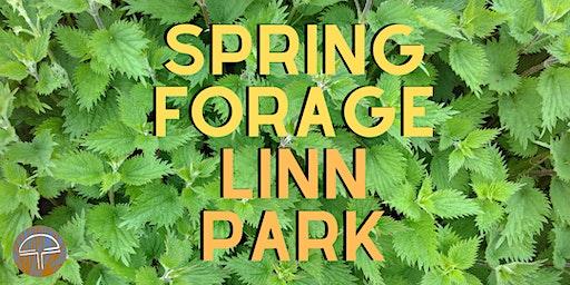 Spring Foraging - Linn Park!