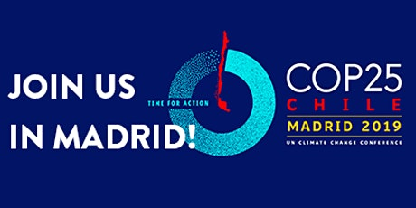 The Climate Collage workshop at COP25 in Madrid billets