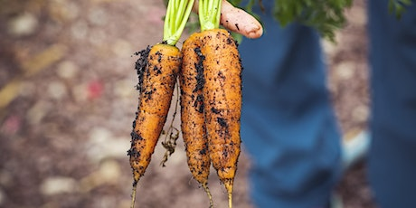 Sustainable Food Gardening: Growing food with simplicity & minimal impact tickets