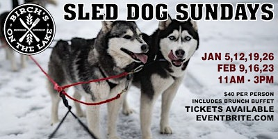 Sled Dog Sunday's at Birch's on the Lake