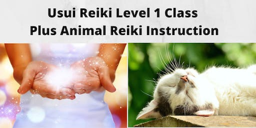 Usui Reiki Level 1 Class Plus Animal Reiki Instruction