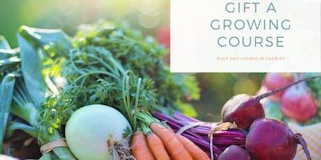 Growing Vegetables in your garden  in Galway tickets