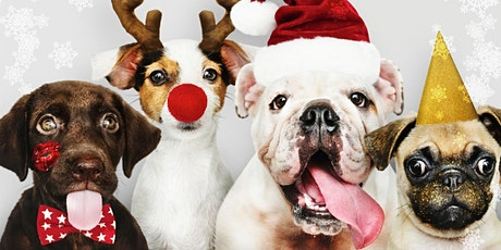 RESCUE CITY DOG HOLIDAY PAW-TY!  tickets
