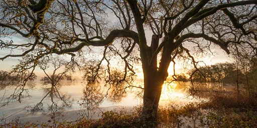 Creative Landscape Photography - Two Day Workshop with Jerry Dodrill