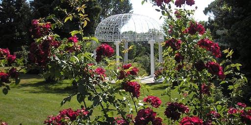"Tour of the world famous ""Old Garden Rose "" rose garden at Fairmount Cemetery"