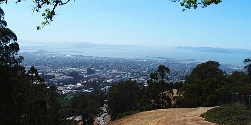 East Bay: Berkeley Hills and the Upper Campus Urban Walk