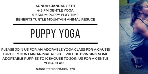 Puppy Yoga with Turtle Mountain Animal Rescue