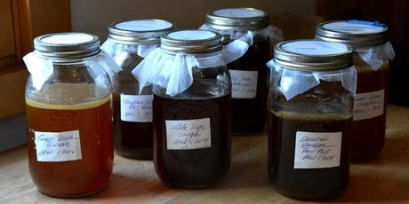 Making your own gourmet vinegar at home / Foraging walk and Food tasting tickets