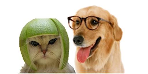 thelovemaze.com Single Pet Lovers Match Up