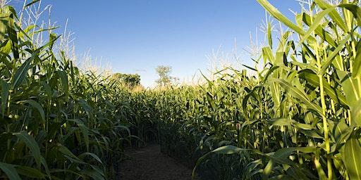Proven Seed - Dekalb Corn Training Seminar
