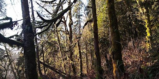 Seattle Women's hike