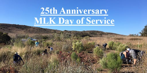 25th Anniversary MLK Day of Service at the Yerba Mansa Meadows