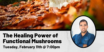 The Healing Power of Functional Mushrooms