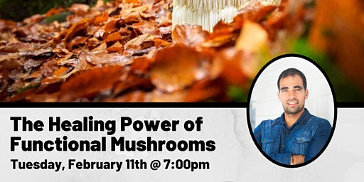 The Healing Power of Functional Mushrooms
