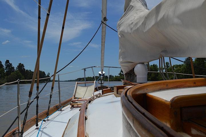 Imagen de Navegación privada por  el Delta con comida a bordo!
